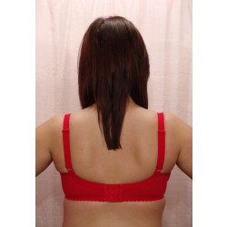 10799 Red, Back View